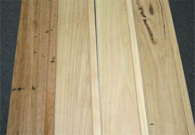 Different Silvertop Ash Grain